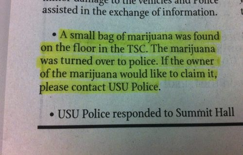 drugs marijuana 420 - 7352981248