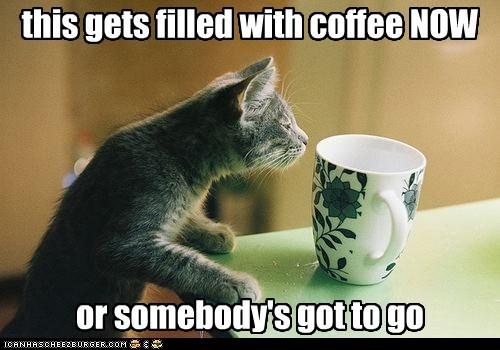 morning coffee - 7353060864