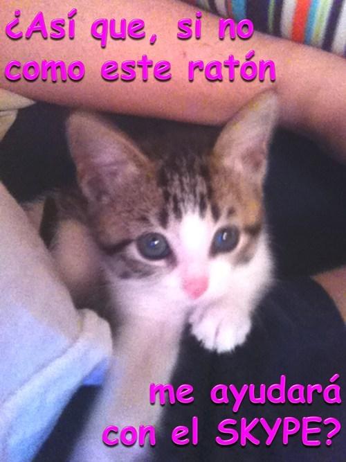 en español - 7354834688