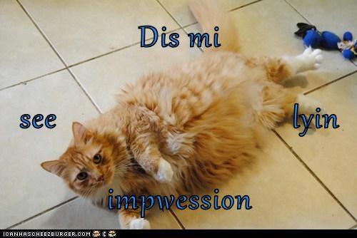 Cheezburger Image 7355247616