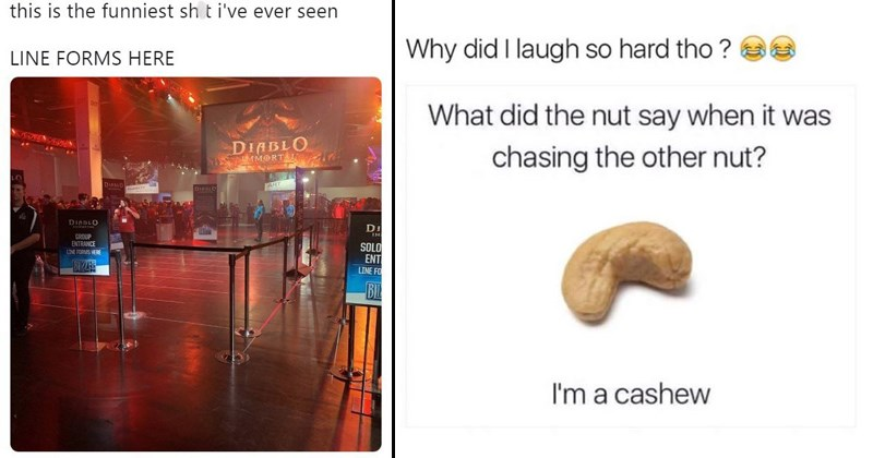 stupid memes random memes funny memes pointless memes twitter funny tweets stock photo gaming diablo video games scooby doo Dragon Ball Z 6h2h7q49 - 7358725