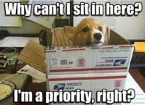 first class,mail,priority