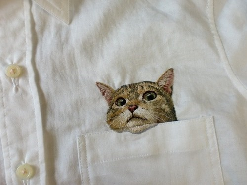 shirts pockets Cats poorly dressed g rated - 7360260608