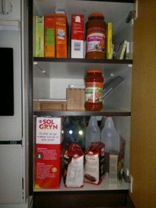 cat SOON cabinet - 7360297472