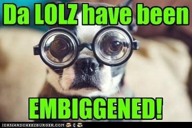 EMBIGGENED! Da LOLZ have been