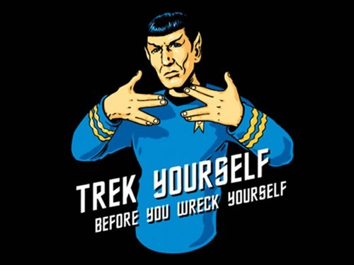 Spock Star Trek wreck yourself - 7360834048