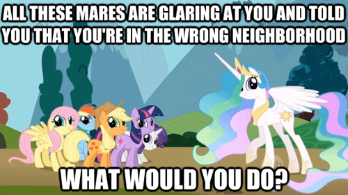 celestia mane six you're in the wrong neighborhood - 7361124352