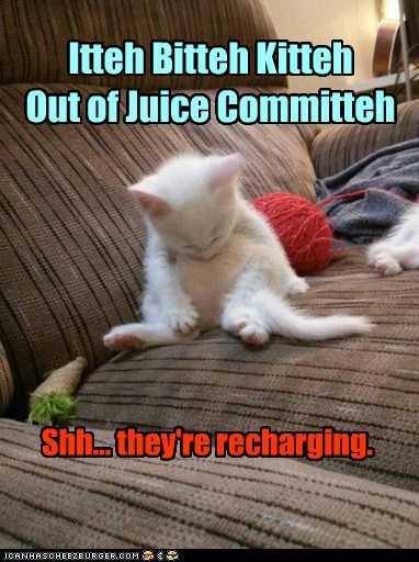 Itteh Bitteh Kitteh Out of Juice Committeh Shh... they're recharging.