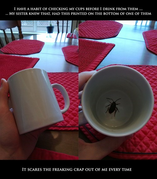 insect design prank mug g rated win - 7361302528