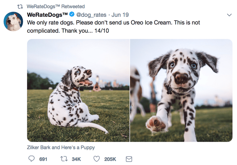 adorable ratings for dogs from the twitter account We Rate Dogs