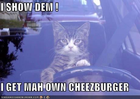 Cheezburger Image 736412416