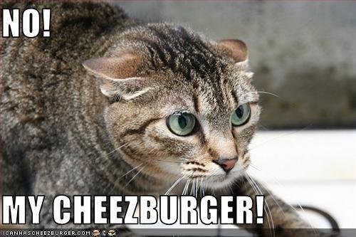 Cheezburger Image 736475392