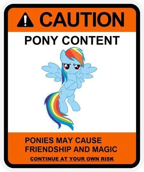 love and tolerate rainbow dash - 7364893696