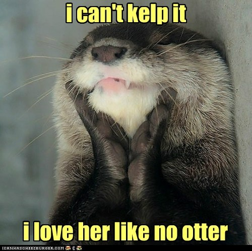 i can't kelp it i love her like no otter