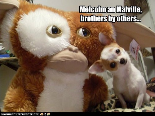 Melcolm an Malville, brothers by others...