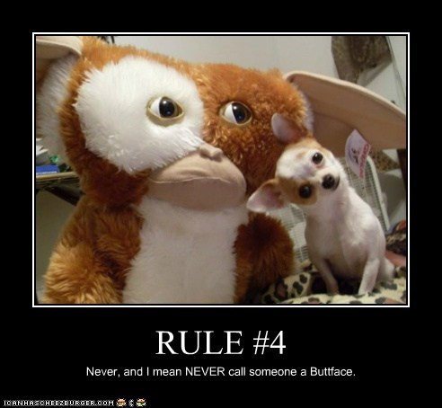 RULE #4 Never, and I mean NEVER call someone a Buttface.