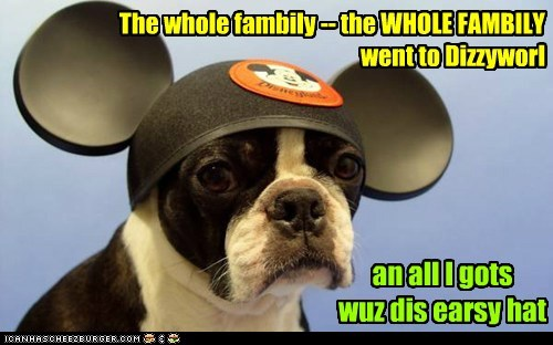 The whole fambily -- the WHOLE FAMBILY went to Dizzyworl an all I gots wuz dis earsy hat