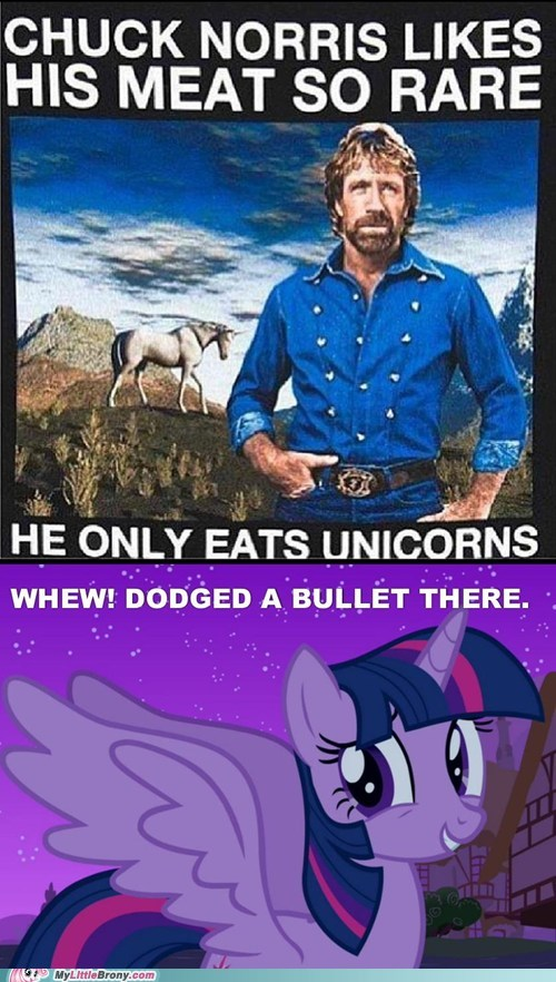 alicorns,unicorns,chuck norris