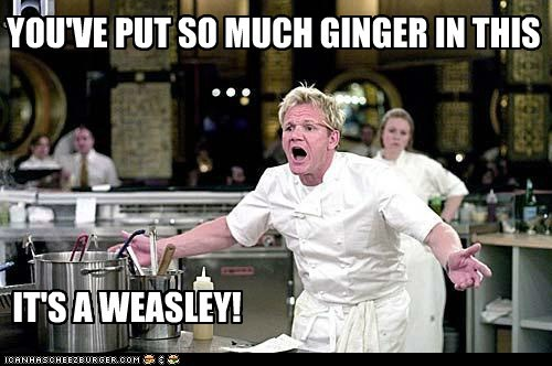 ginger weasley gordon ramsay - 7367950592