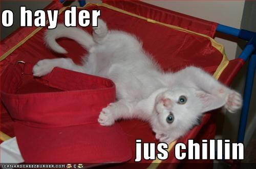 Cheezburger Image 736833792