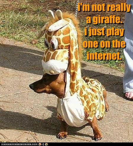 i'm not really a giraffe. i just play one on the internet.