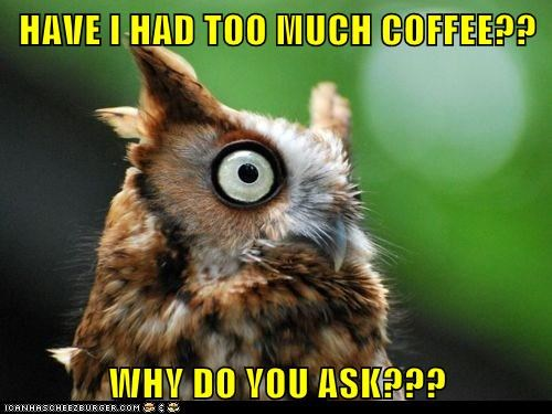 Owl,coffee