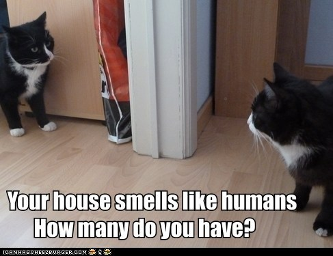 humans - 7368639488