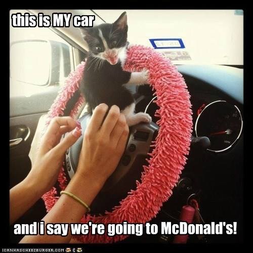 this is MY car and i say we're going to McDonald's!