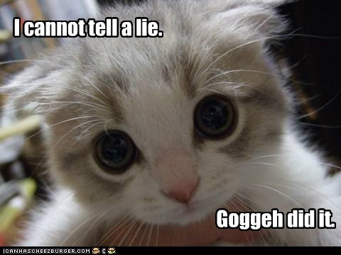 goggie,kitty