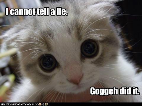 goggie kitty - 7369261824