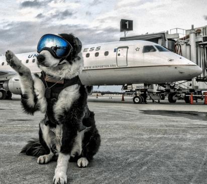 job airport - 737029