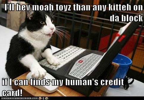 I'll hev moah toyz than any kitteh on da block  if I can finds my human's credit card!