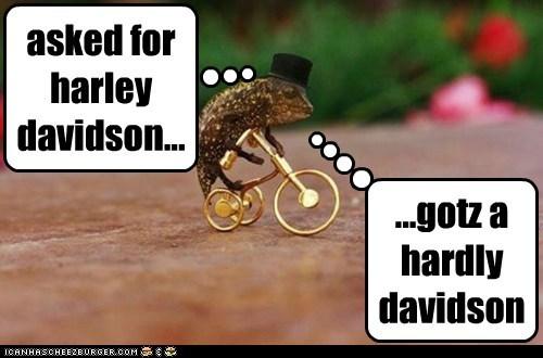 asked for harley davidson...