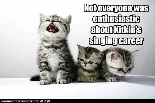 singing,kitty