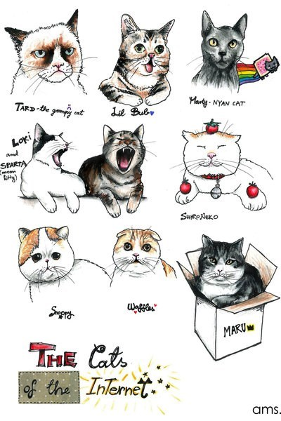lil bub,snoopy,Nyan Cat,maru,the internet,tard,Cats,waffles