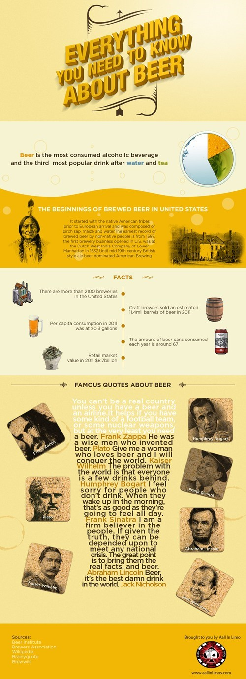 beer facts infographics - 7373844736
