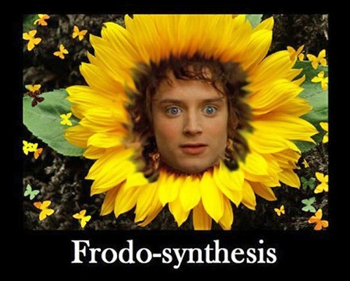frodo Lord of the Rings - 7373987072