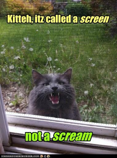 scream screen