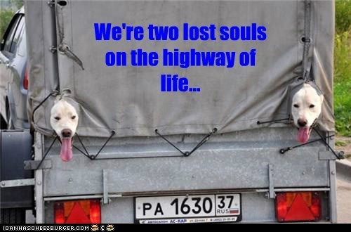We're two lost souls on the highway of life...