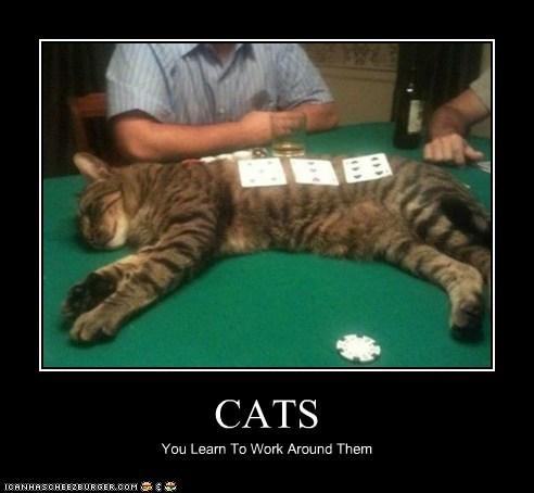 poker - 7376474368