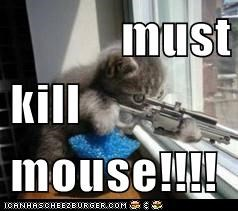 must kill mouse!!!!