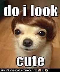 do i look  cute