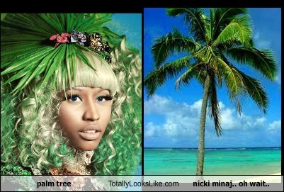 totally looks like,Palm Tree,nicki minaj