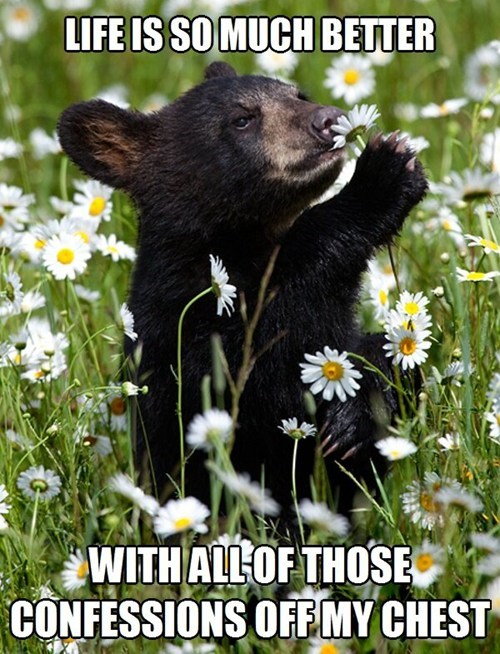 bears,cute,Confession Bear