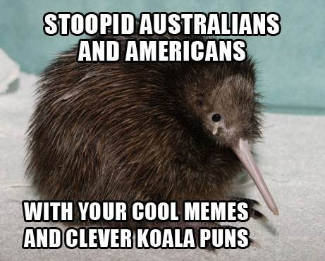 new zealand,koalas,kiwis