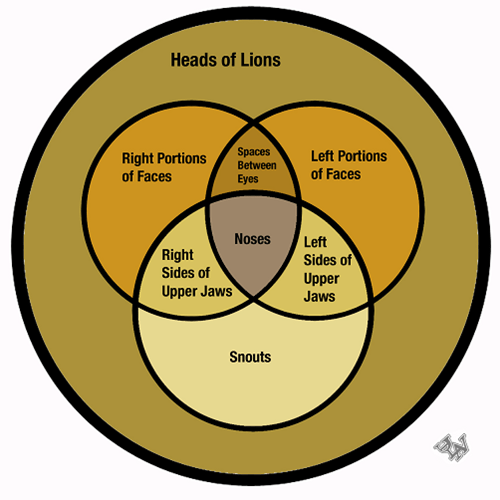 anatomy lions venn diagrams - 7377145088