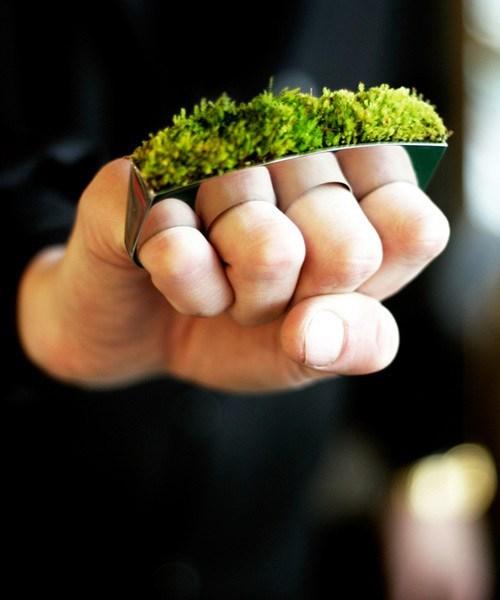 wtf brass knuckles grass - 7377283840