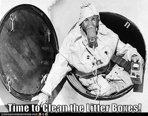 gas masks cleaning litter boxes