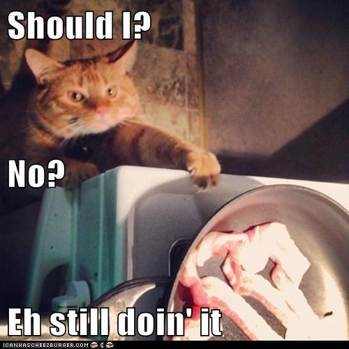 Should I? No?  Eh still doin' it
