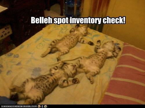 Belleh spot inventory check!